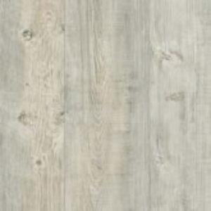 Latin Pine 24242