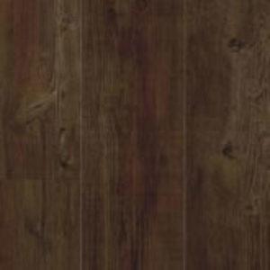 Latin Pine 24580
