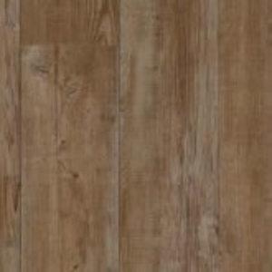Latin Pine 24868