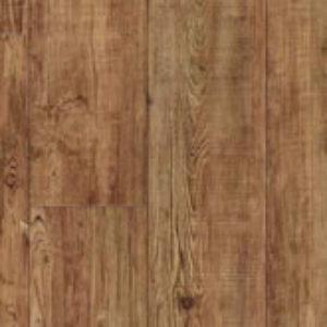 Latin Pine 24874